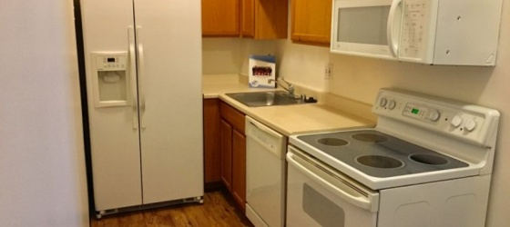 University Park Towers~ 1 Bed Condo near DU and Wash Park! **$500 off 1st month rent **