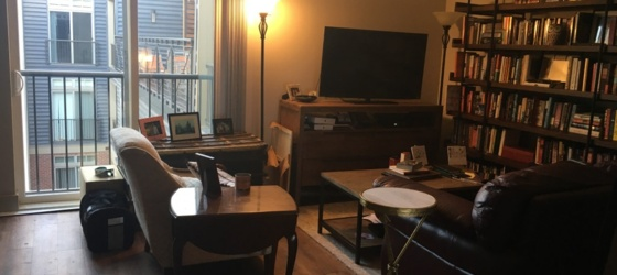 Union Station Apartment for Rent