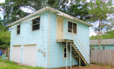 Houses Near Eckerd Stylish 2 /2 detached apartment in St Pete Hyde Park area! for Eckerd College Students in Saint Petersburg, FL