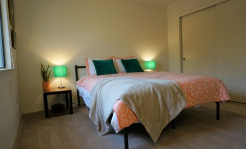 Apartments Near UC Davis 1x1 Available for Fall for University of California - Davis Students in Davis, CA