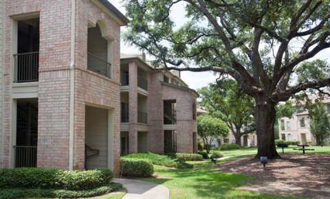 Apartments Near LSU Mansions In The Park for Louisiana State University Students in Baton Rouge, LA