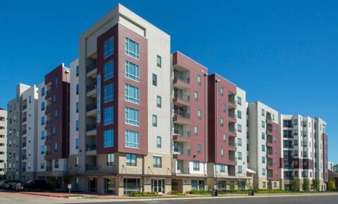 Apartments Near Texas A&M Sterling NorthGate for Texas A&M University Students in College Station, TX