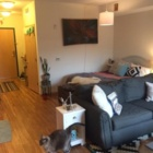 Roomy Studio with Great Ammenities in the Heart of the North Loop