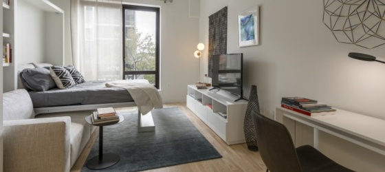 Housing Near NYU Caesura- 804 (Furnished Studio 1 BA)
