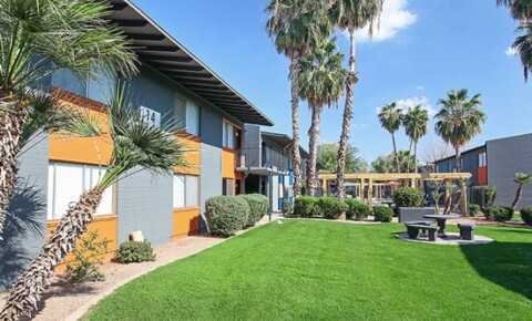 Apartments Near SCI Live above THE STANDARD! The Standard Apartment Homes- close to ASU for Scottsdale Culinary Institute Students in Scottsdale, AZ
