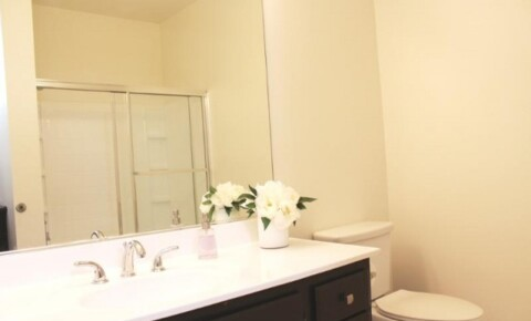 Apartments Near Fordham Gorgeous 1 Bedroom Apartment Available for Fordham University Students in Bronx, NY