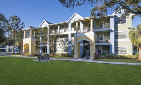 Apartments Near UCF The Verge Orlando for University of Central Florida Students in Orlando, FL